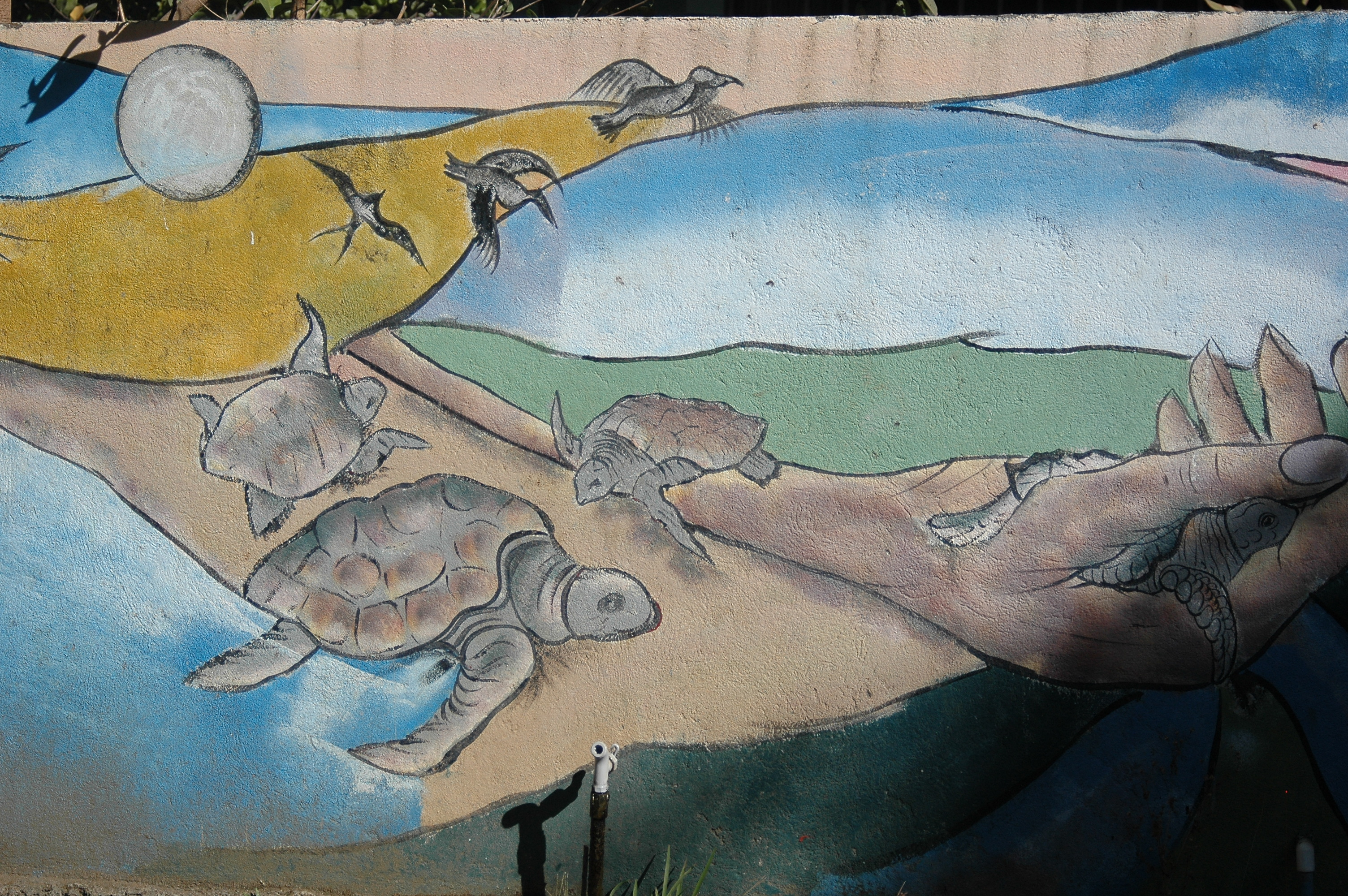 Murial at the Turtle Conservation Beach