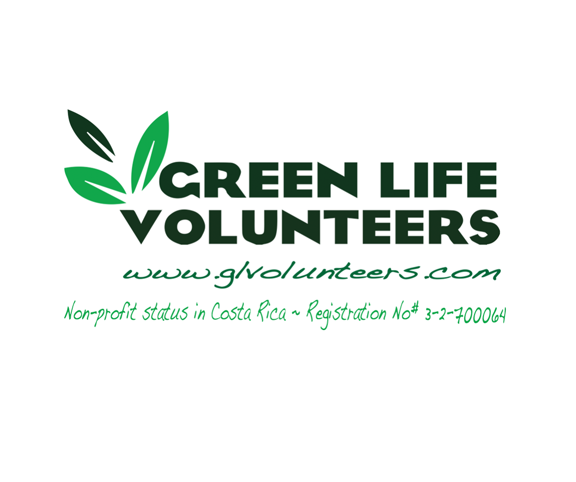 Green Life Volunteers has a non-profit status in Costa Rica!