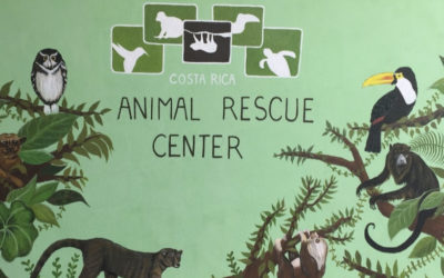 Review Alajuela Wildlife Rescue Center
