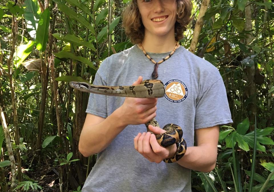 Charly – Butterfly Farm Project – November 2019